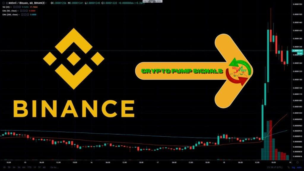 Results of Crypto Pump signals for Binance telegram channel